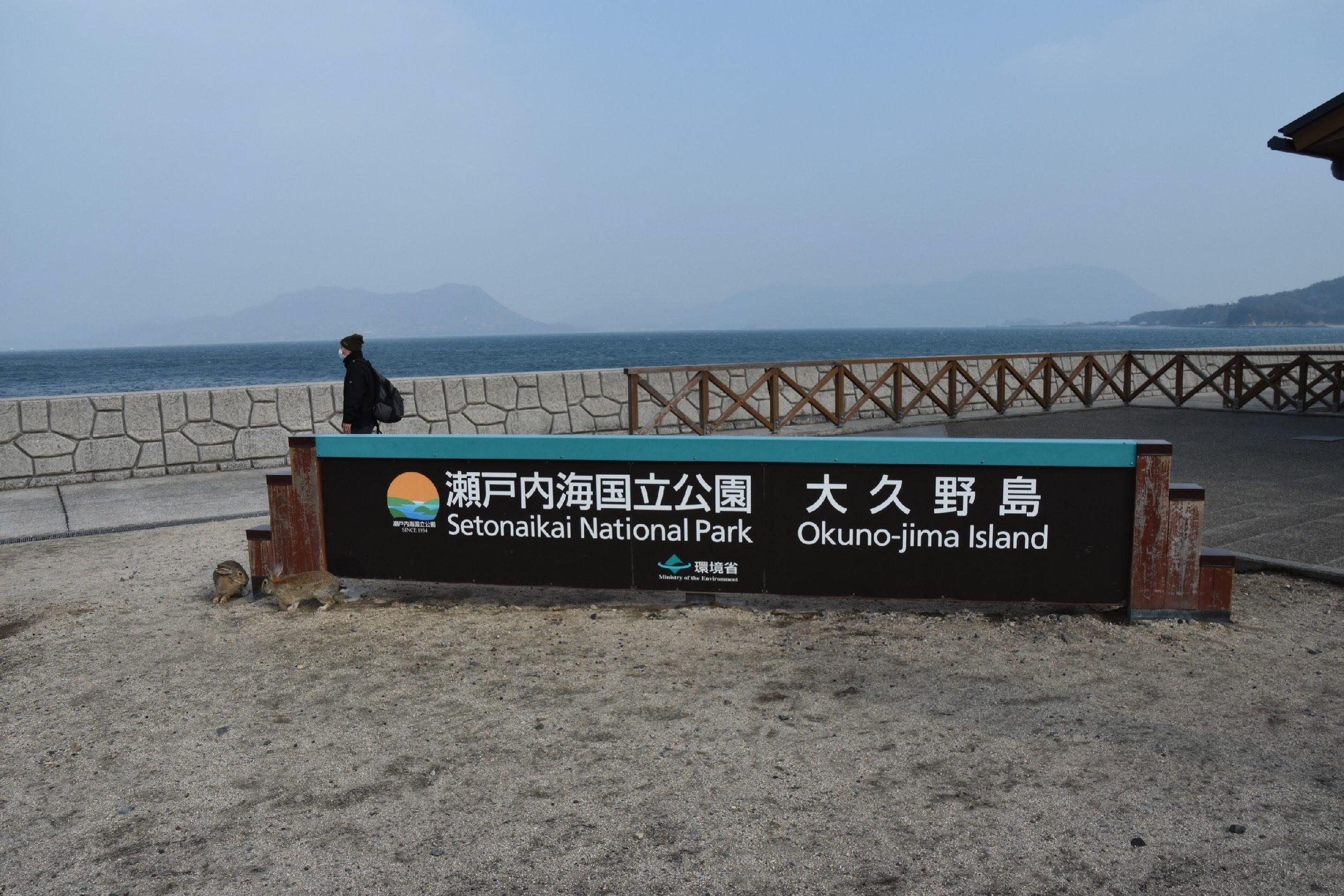 大久野島上陸の写真