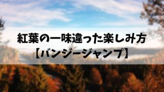 紅葉の一味違った楽しみ方 【バンジージャンプ】